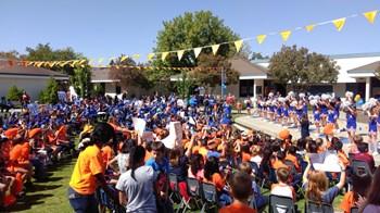 picture of orange versus blue rally